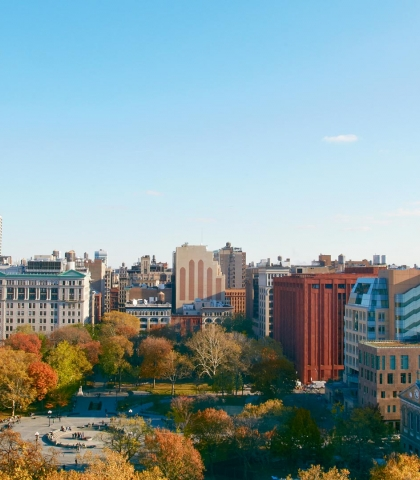 New York University School of Global Public Health